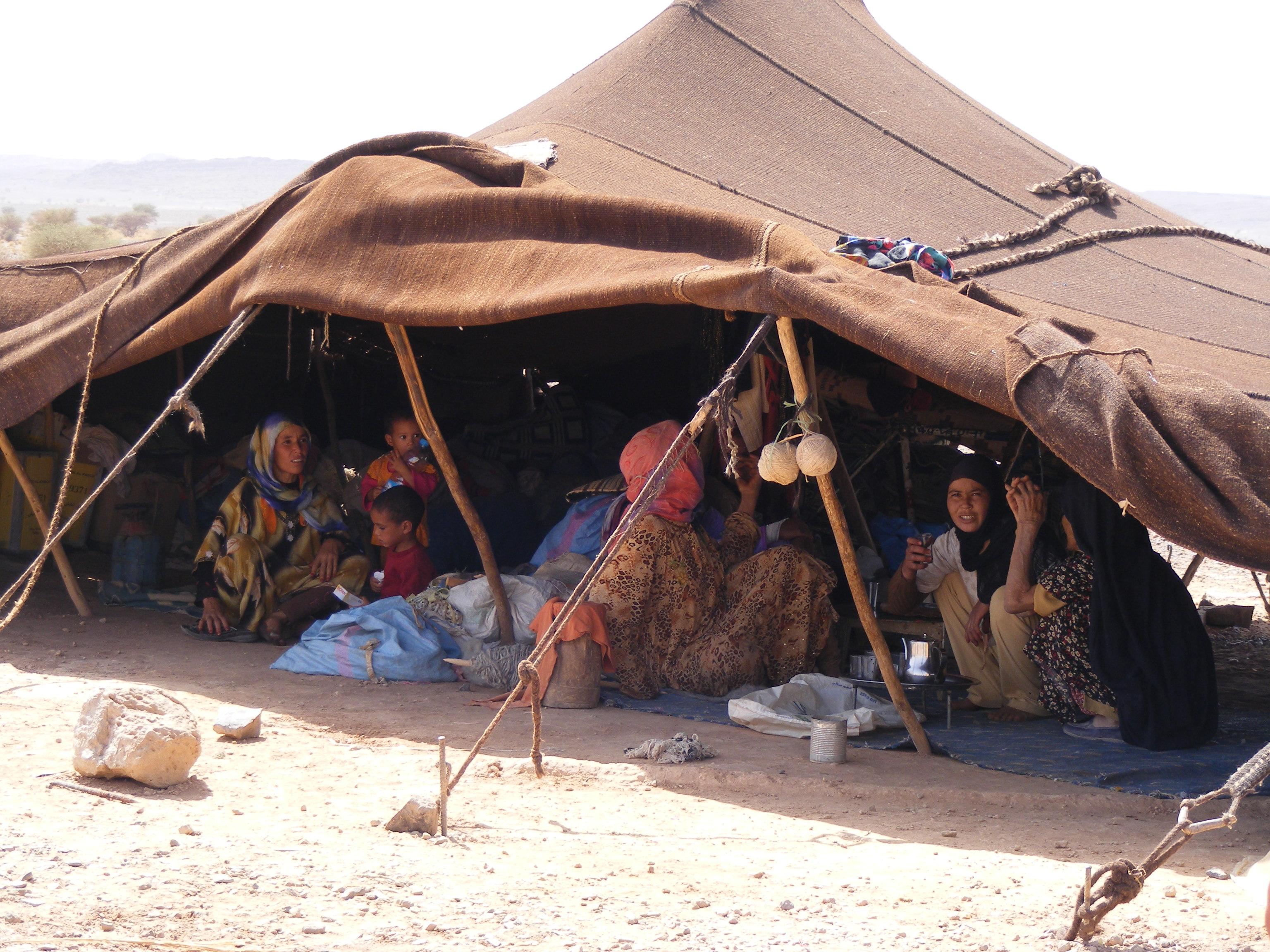 """Résultat de recherche d'images pour """"algerie, tentes nomades"""""""